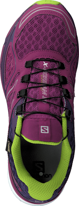Salomon X-Scream 3D Gtx® W Mystic Pur/Cosm