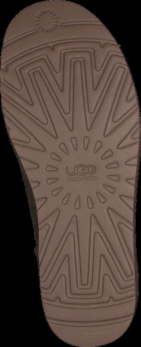 UGG Australia - Cl. Short Dry leaf
