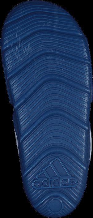 adidas Sport Performance - Akwah 9 C Eqt Blue/Ftwr White/Ftwr White