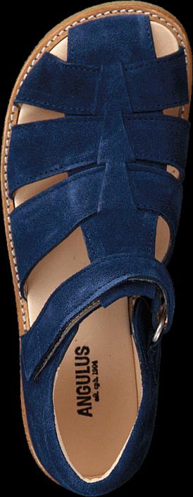Angulus - 5026-101-1146 Blue