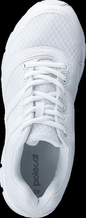 Polecat - 435-2325 White