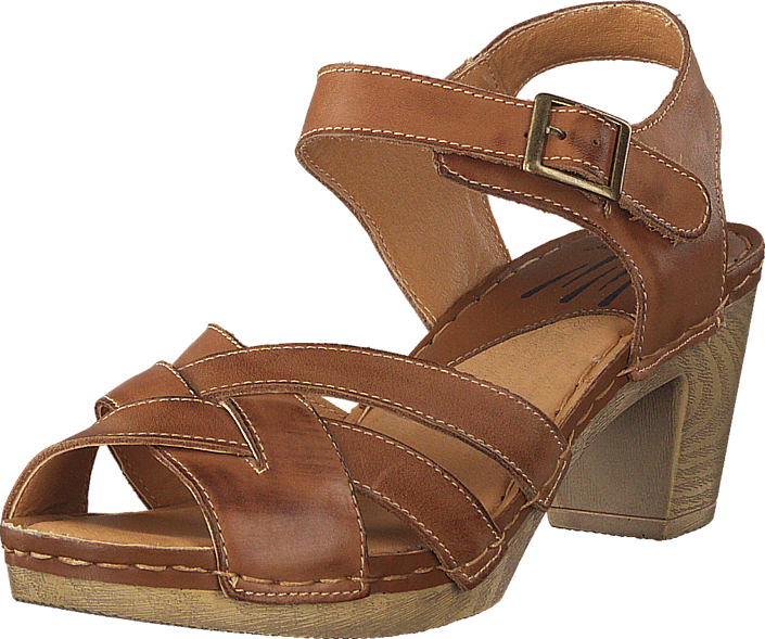 Wildflower Templer 31 Tan