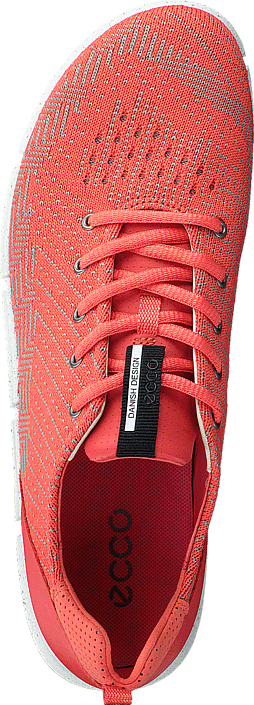 Ecco - Intrinsic Coral