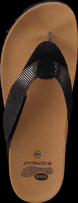 Scholl - Alaxias Black