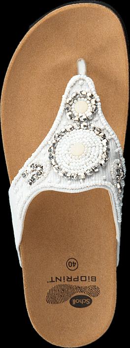 Scholl - Taila White