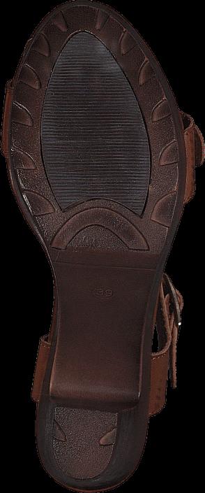 Xti - 45068 C.Camel