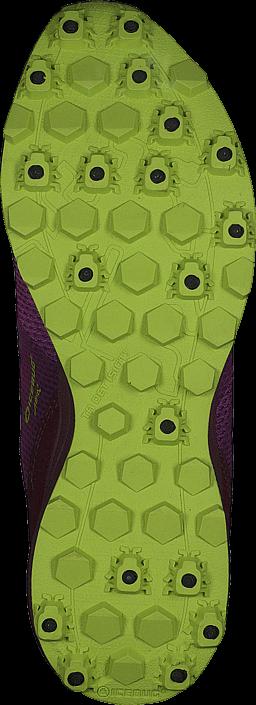 Icebug - Anima5 W BUGrip Poison/Mulberry