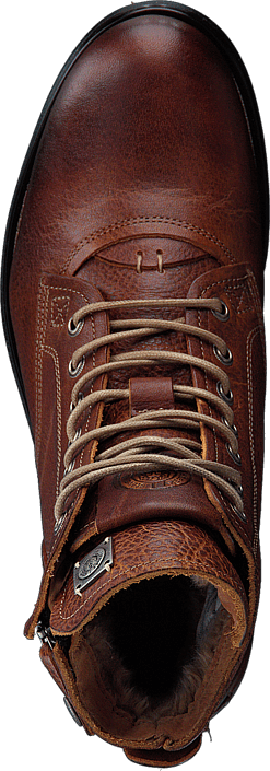 Sneaky Steve - Kingdom Leather Shoe COGNAC