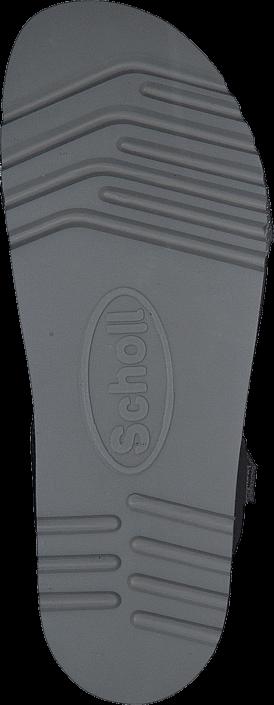 Scholl - Astrelle Grey