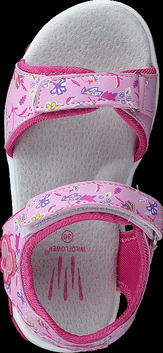 Wildflower - Samalle Pink