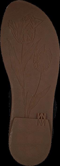 El Naturalista - Tulip Ibón Black
