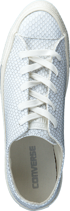 Converse All Star Gemma Hi Snake Leath Buff