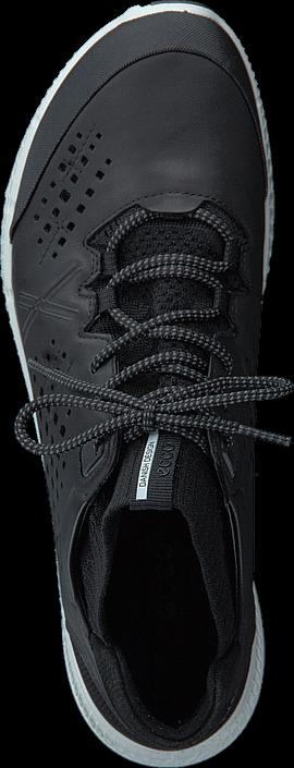 Ecco - 861003 Intrinsic TR Black/ Black