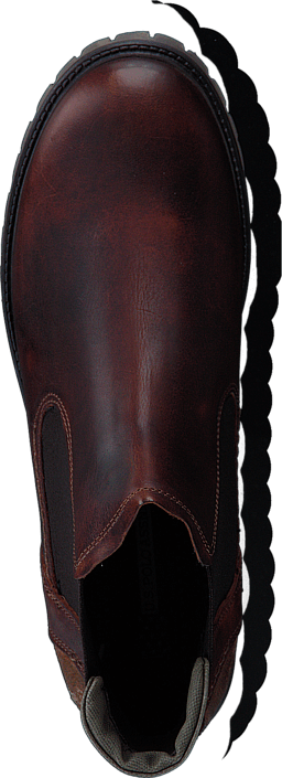 U.S. Polo Assn - Solange Brown Leather