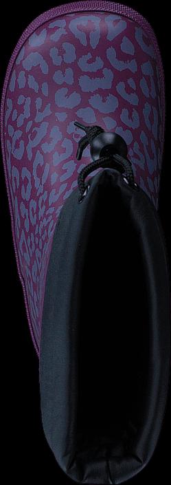 Pax Denzo Purple