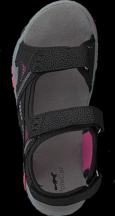 Polecat - 413-4621 Black/Fuchsia