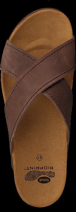 Scholl - Tangor Brown