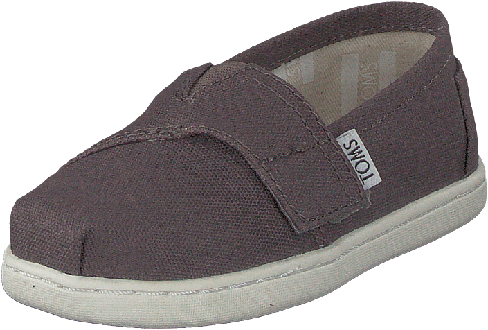 Toms - Alpargata Tiny Ash Canvas